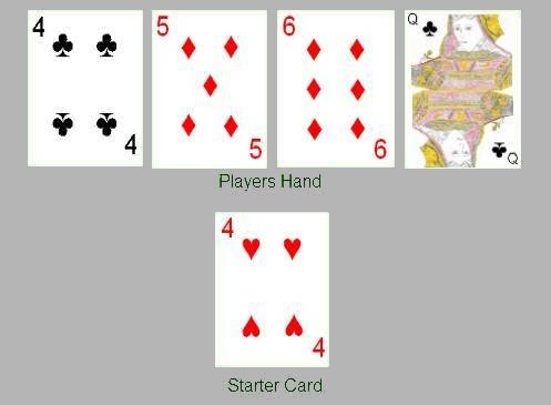 How To Play Cribbage (Six card)